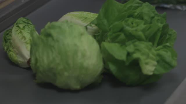 vídeos de stock e filmes b-roll de salad lettuces and packets of ready-to-eat salad leaves travel along a conveyor belt at a uk supermarket. - vendas