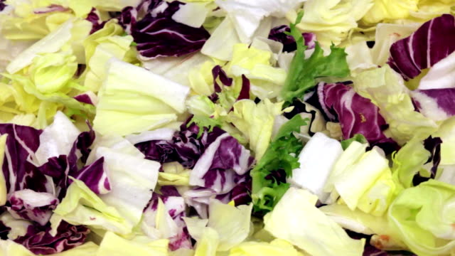 salad - butter lettuce stock videos & royalty-free footage