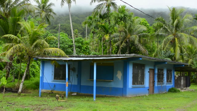 Saladak Micronesia private local blue house in paradise with palm trees in lush forest