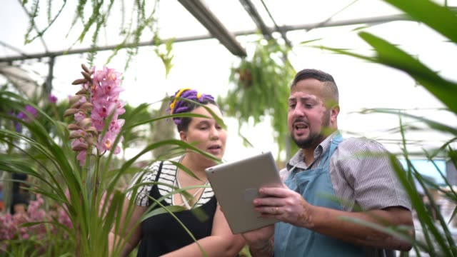 salesman using digital tablet and helping customer buying flowers - strategia di vendita video stock e b–roll