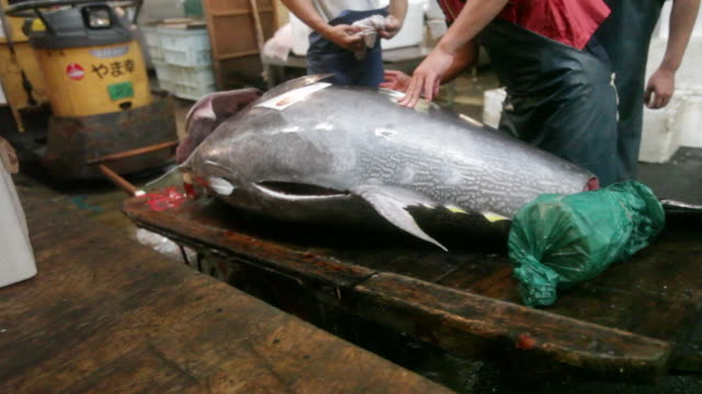 Salesmen at the Tsukiji Market in Tokyo cutting off and preparing a giant tuna fish for sale