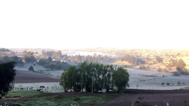 vidéos et rushes de salidas al campo tuta - hielo
