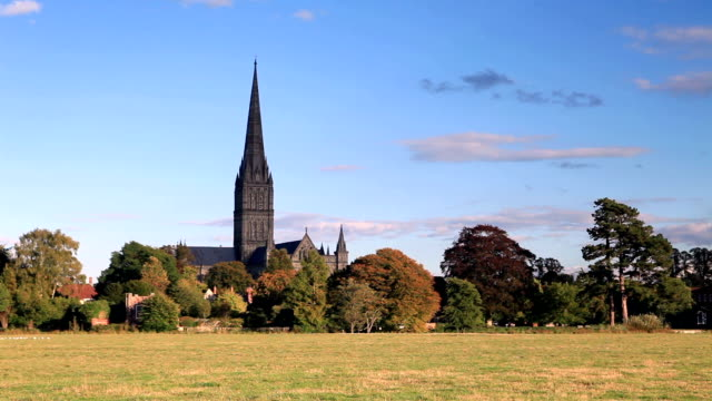 stockvideo's en b-roll-footage met salisbury cathedral and the west harnham water meadows. - kerktoren