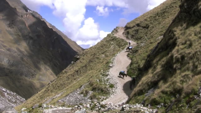 salkantay mountain pass, inca trail, peru - machu picchu stock videos and b-roll footage