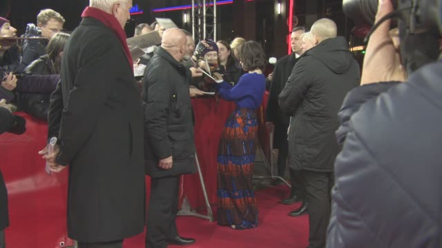 'maudie' red carpet at friedrichstadtpalast on february 15 2017 in berlin germany - sally hawkins stock-videos und b-roll-filmmaterial