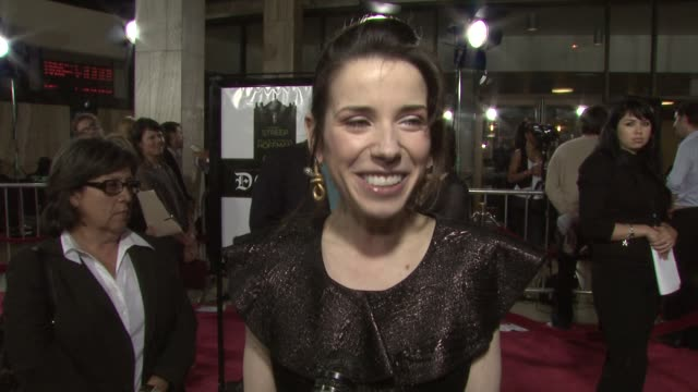 sally hawkins on the event her film 'happygolucky' at the doubt premiere at los angeles ca - sally hawkins stock videos & royalty-free footage