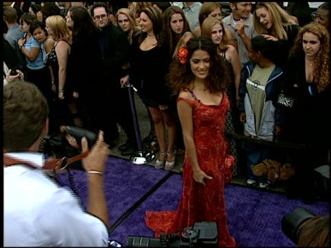 salma hayek at the 1997 mtv movie awards at barker hanger in santa monica, california on june 7, 1997. - salma hayek stock videos & royalty-free footage
