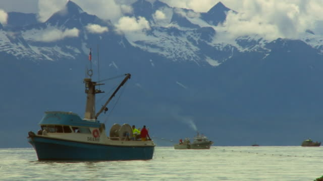 salmon fishing boats in the waters next to the tongass national forest in alaska - 国有林点の映像素材/bロール
