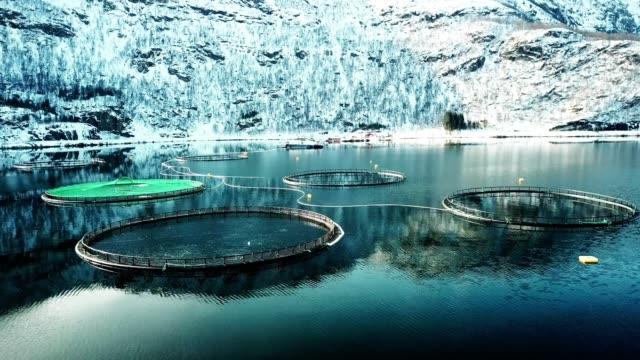 Laxfiske gård i Norge