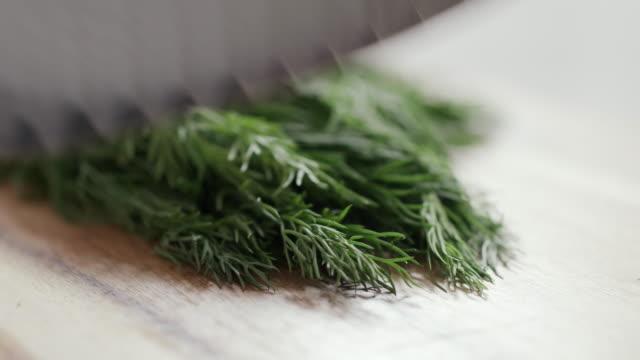 salmon gravlax recipe - dill stock videos and b-roll footage