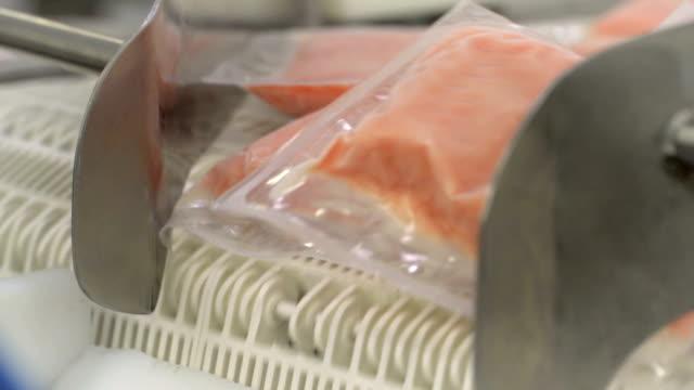サケ産業 - 食品工場点の映像素材/bロール