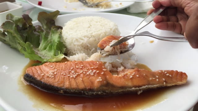 salmon steak and rice - salmon steak stock videos & royalty-free footage