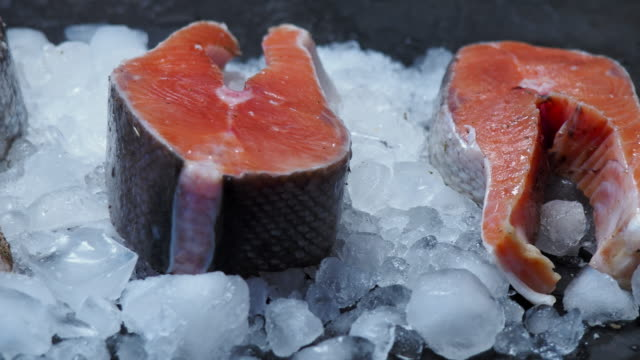 salmon steaks - ice stock videos & royalty-free footage