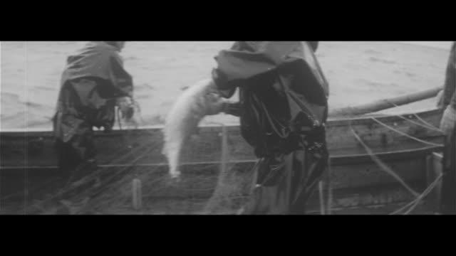salmon trout fishing/patrol boat 'tsugaru' heading out to salmon trout fishing grounds trawling for salmon trout boarding a fishing boat that sent... - sos stock videos and b-roll footage