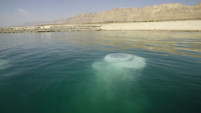 Sals pillars in the Dead Sea