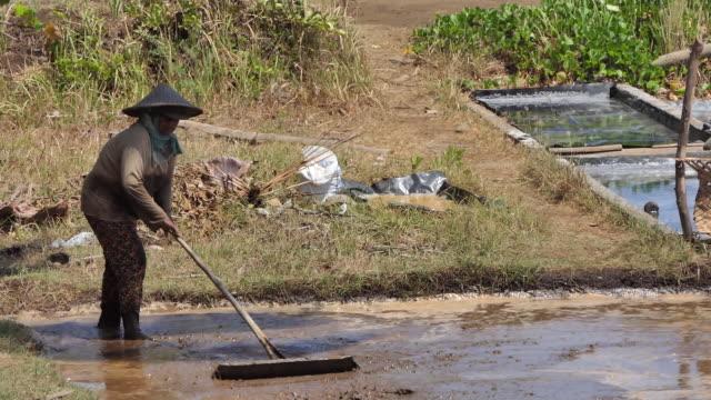 Salt Farmer, Tejakula Buleleng Bali.