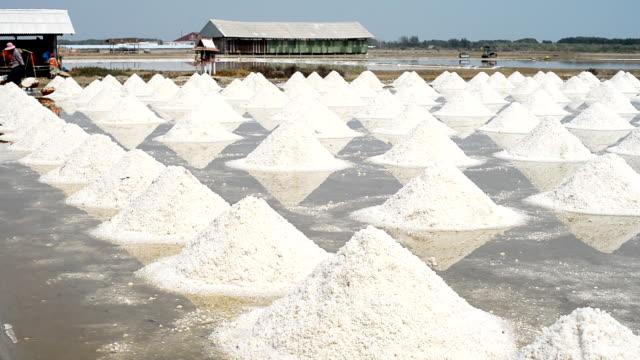 Salt jordbruk i Thailand