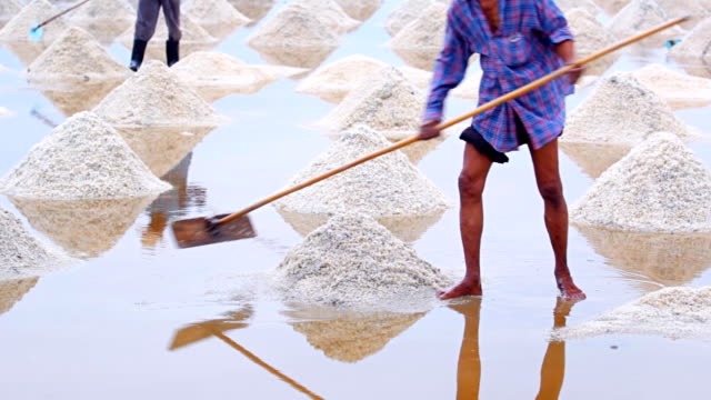 salt harvesting, thailand. - evaporation stock videos & royalty-free footage