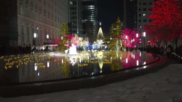 Salt Lake City Christmas lights reflection