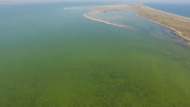 vídeos de stock e filmes b-roll de salt lake with coastal salt marshes, aerial view - banco de areia