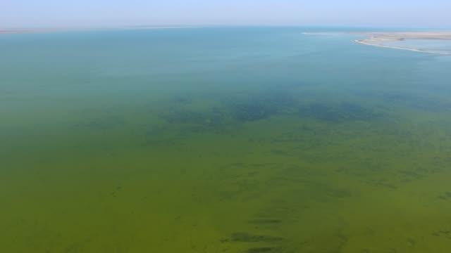 vídeos de stock e filmes b-roll de aerial: salt lake with coastal salt marshes - banco de areia