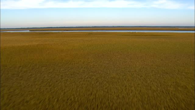 Salt Marsh Around Muddy Bay  - Aerial View - South Carolina,  Charleston County,  United States