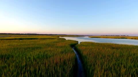 salt marsh fly-through - marsh stock videos & royalty-free footage