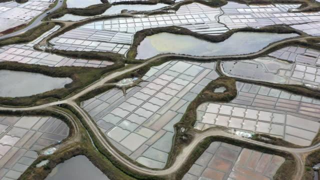vidéos et rushes de salt marshes of guerande, loire-atlantique, france - marécage