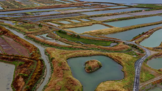 salt ponds on the ile de re, france - mineral stock videos & royalty-free footage