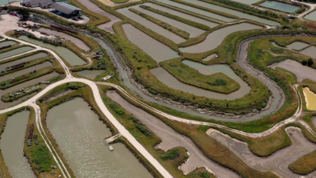 salt ponds on the ile d'oleron, france - nouvelle aquitaine stock videos and b-roll footage