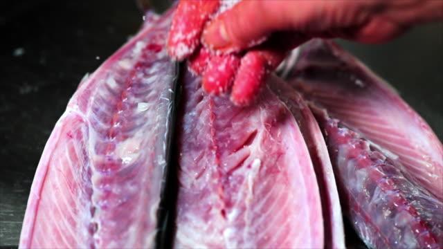 salt sprinkled over mackerel fillets - freshness stock-videos und b-roll-filmmaterial