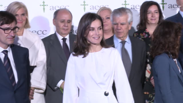 salvador illa roca , queen letizia of spain and ignacio muñoz attend the forum against cancer 'el impacto economico y social del cancer en españa' at... - royalty stock videos & royalty-free footage