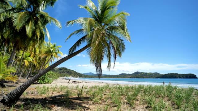 samara, puerto carrillo, guanacaste province, costa rica - puntarenas province stock videos & royalty-free footage