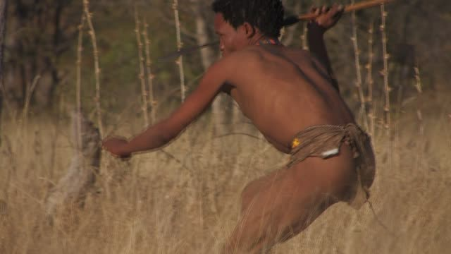 A San bushmen throws a spear as he rises out of the long grass. Available in HD.