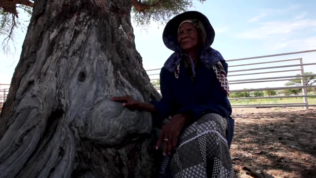 san bushwoman una 82, from the khomani san community in the southern kalahari desert on october 15, 2009 in the kalahari, south africa. una is one of... - last stock videos & royalty-free footage