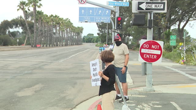san diego, ca, u.s. - people picketing after 6-year-old killer whale died suddenly at sea world, on monday, august 23, 2021. - killer whale stock videos & royalty-free footage