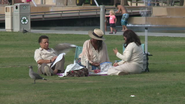 kswb san diego ca us people relaxing in park in san diego bayfront on monday august 5 2019 - relaxation stock videos & royalty-free footage