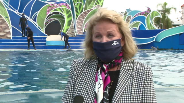 san diego, ca, u.s. - woman in face mask speaks about reopening san diego sea world amid coronavirus pandemic on monday, august 24, 2020. - captive animals bildbanksvideor och videomaterial från bakom kulisserna