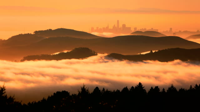 san francisco bay at sunrise - fog stock videos & royalty-free footage
