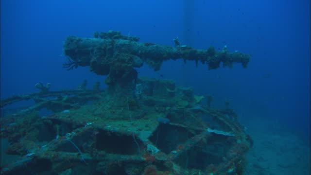 stockvideo's en b-roll-footage met san francisco, bow gun, camera jibs down. chuuk lagoon, south pacific - oceaanbodem