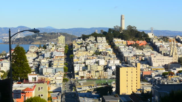 san francisco california hills of the city and coit tower in sunshine with streets and bridges in the background from lombard street - lombard street san francisco bildbanksvideor och videomaterial från bakom kulisserna