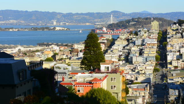 San Francisco California hills of the city and Coit Tower in sunshine with streets and bridges in the background from Lombard Street