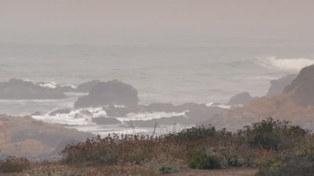 vidéos et rushes de san francisco, californiashoreline on overcast day - ciel couvert
