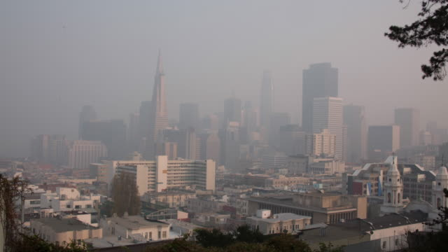 vista fumosa incendio nel centro di san francisco - smog video stock e b–roll