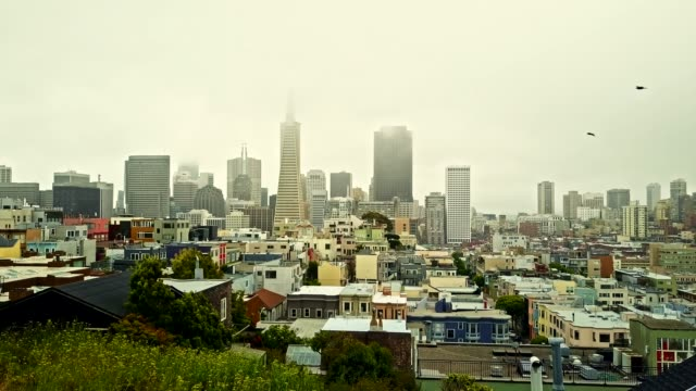 san francisco downtown in an overcast day - overcast stock videos & royalty-free footage