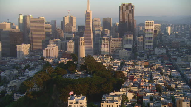 aerial san francisco downtown with coit tower and transamerica building, california, usa - north beach san francisco stock videos & royalty-free footage