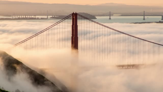 san francisco golden gate bridge low fog morning light - baia di san francisco video stock e b–roll