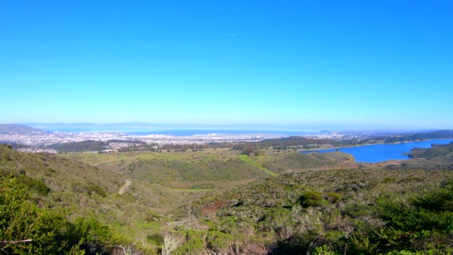 san francisco paninsula - wildlife reserve stock videos & royalty-free footage