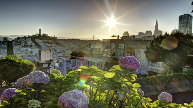 san francisco sunrise. 4k - lombard street san francisco bildbanksvideor och videomaterial från bakom kulisserna