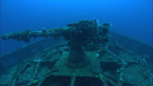 stockvideo's en b-roll-footage met san francisco, tank, chuuk lagoon, south pacific  - scheepswrak